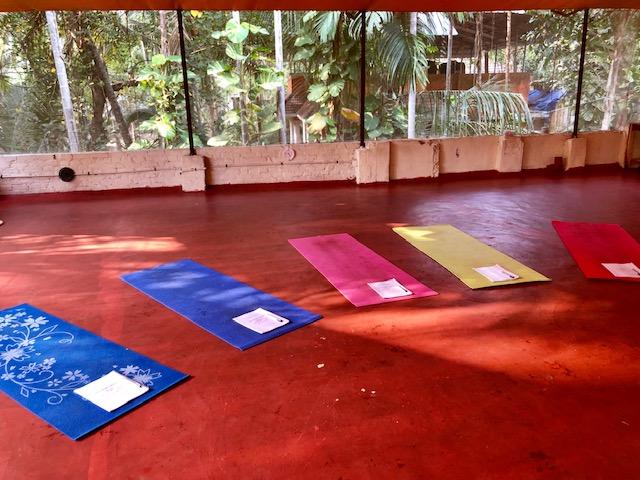 yoga teacher training PadmaKarmaYoga Anja Eva Keller Petruccelli TalkWellness